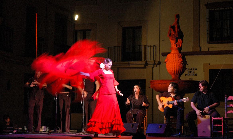 Flamenco à Cordoue (Espagne)
