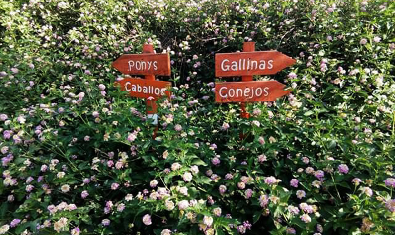 Educación ambiental en una Granja Escuela (Córdoba - España)