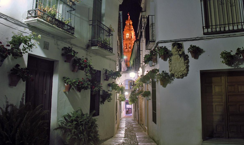 Calleja de las Flores (Alley of the Flowers) (Cordoba - Spain)