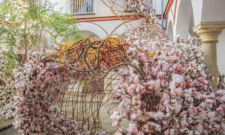 FLORA - Festival Internacional de las Flores (Córdoba - España)