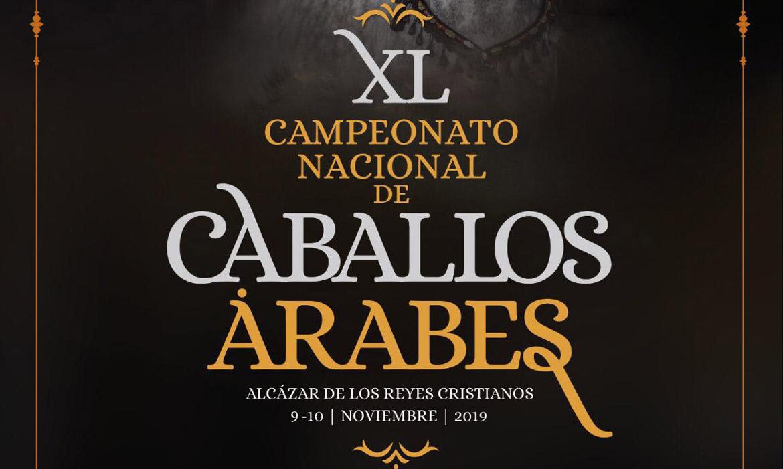 XL Campeonato Nacional de Caballos Árabes (Córdoba - España)